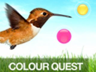Color Quest - 1